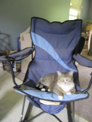 Meisha in Chair