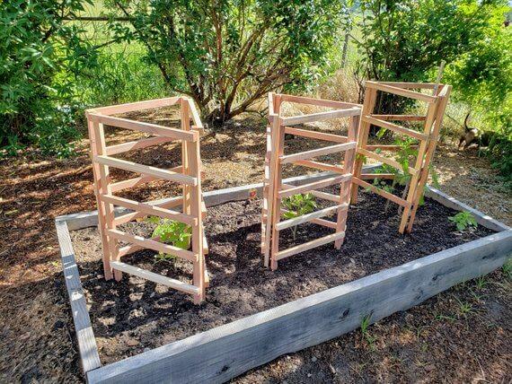 Tomato Plant Trellis