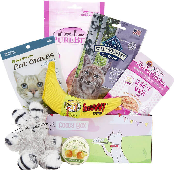 Goody box for cats