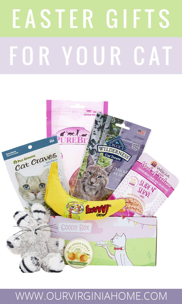 Easter Gifts for Cats | Cat Easter Basket Stuffers | Animal Shelter Gifts