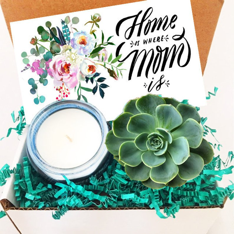 Mother's Day Succulent Gift Box
