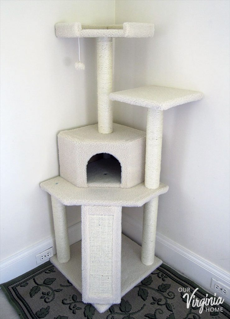 "Frisco 52"" Cat Tree Review"