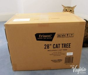 "Frisco 28"" Cat Tree Review"