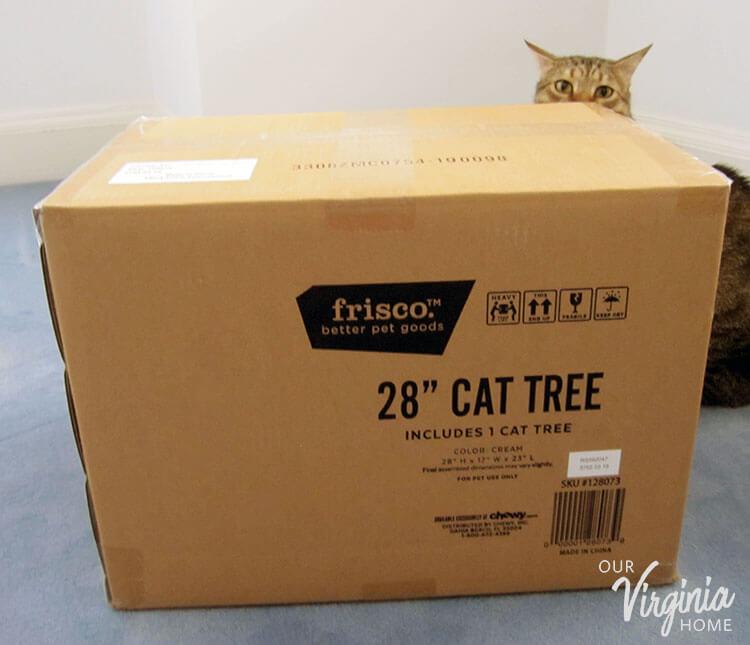 Frisco 28″ Cat Tree Review