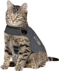 Reduce Cat Anxiety ThunderShirt