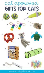 Cat Approved Cat Toys