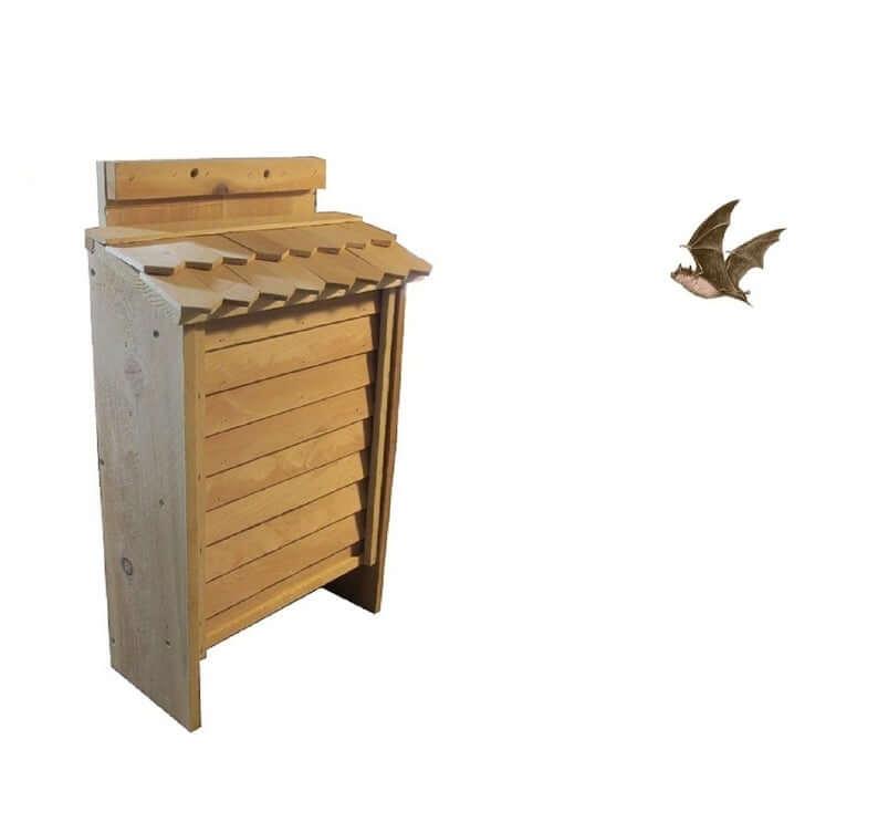 Bat House Design Ideas