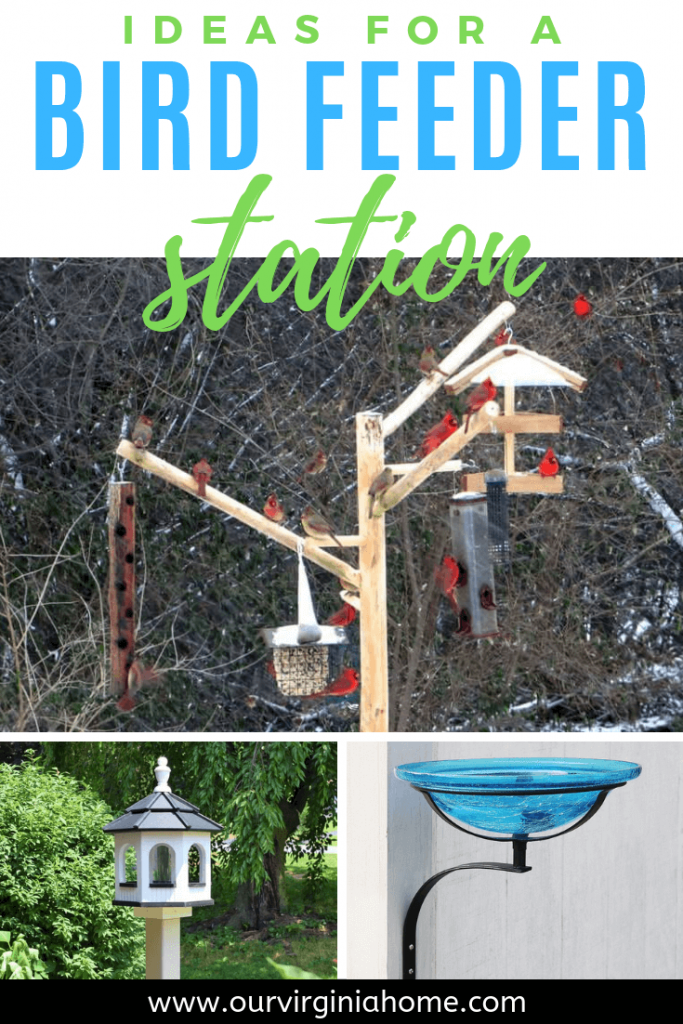 Ideas for a Bird Feeder Station | Bird Watching