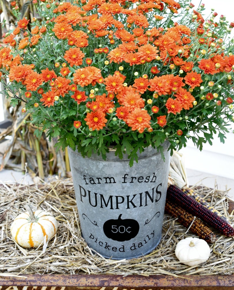 Fall Farmhouse Bucket