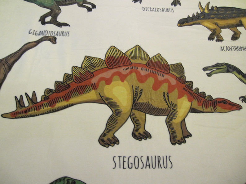 Dinosaur Throw Blanket for Kids