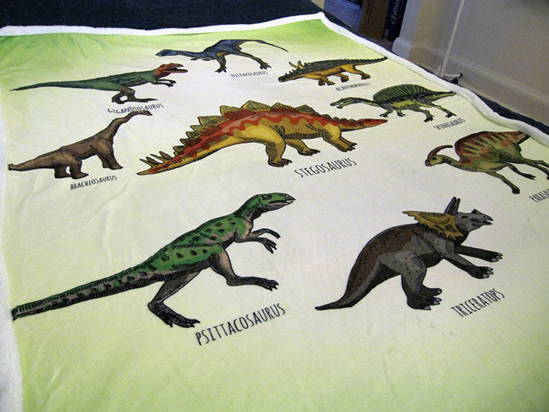 Dinosaur Throw Blanket for Kids Review