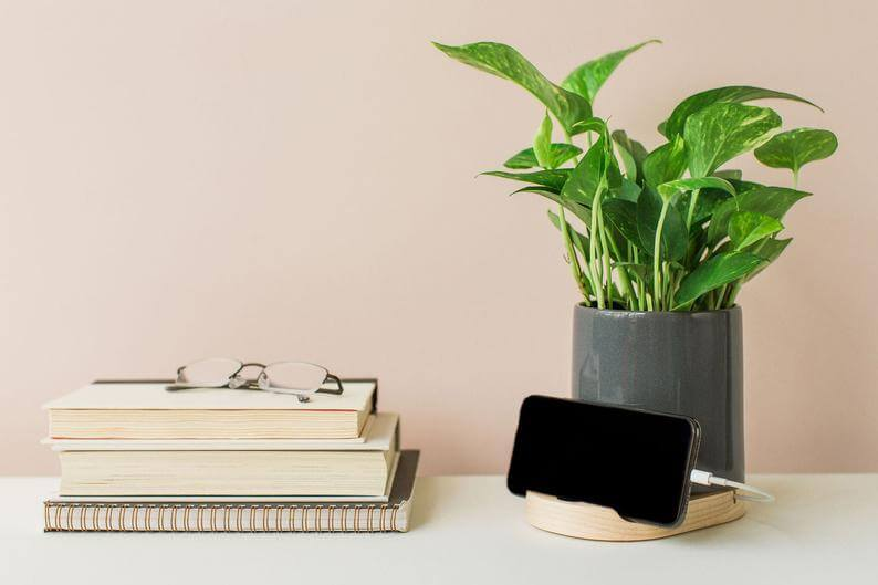 Phone dock and planter